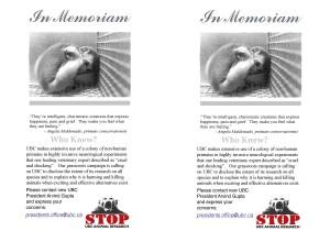 Primate Week flyer